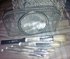 MAC brush set - dani dutra