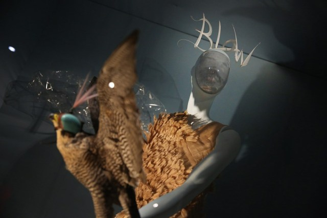 isabella blow exhibition - photo from vogue
